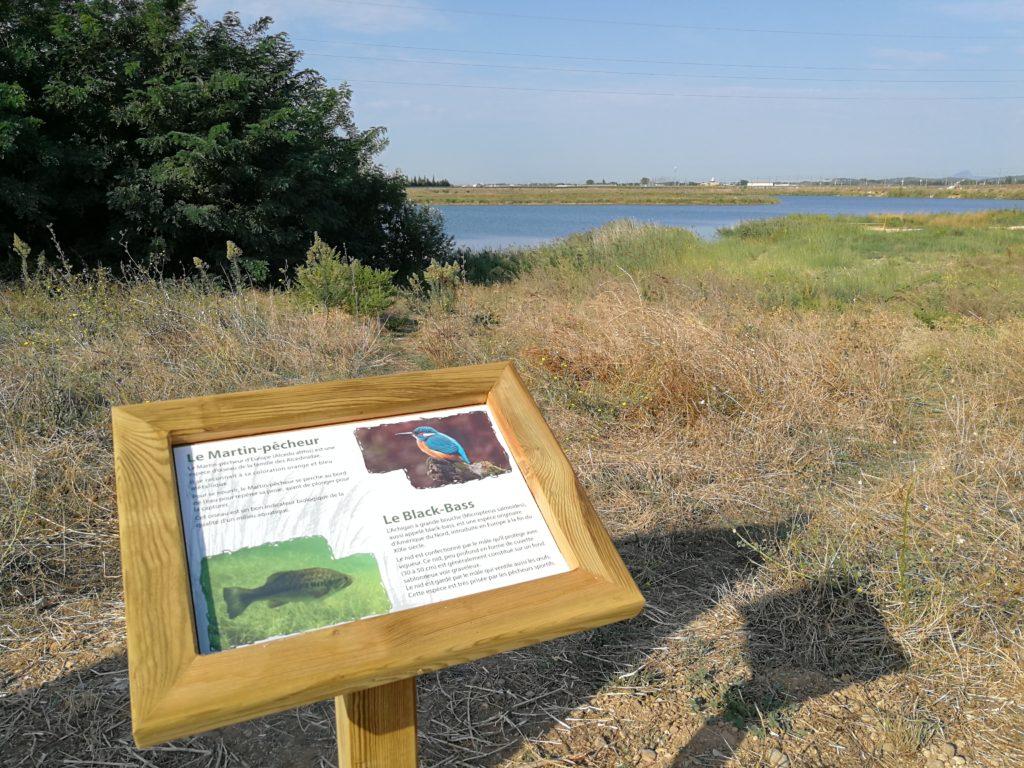Des panneaux de sensibilisation et d'information sont disposés le long des plans d'eau, pour former ce sentier de découverte