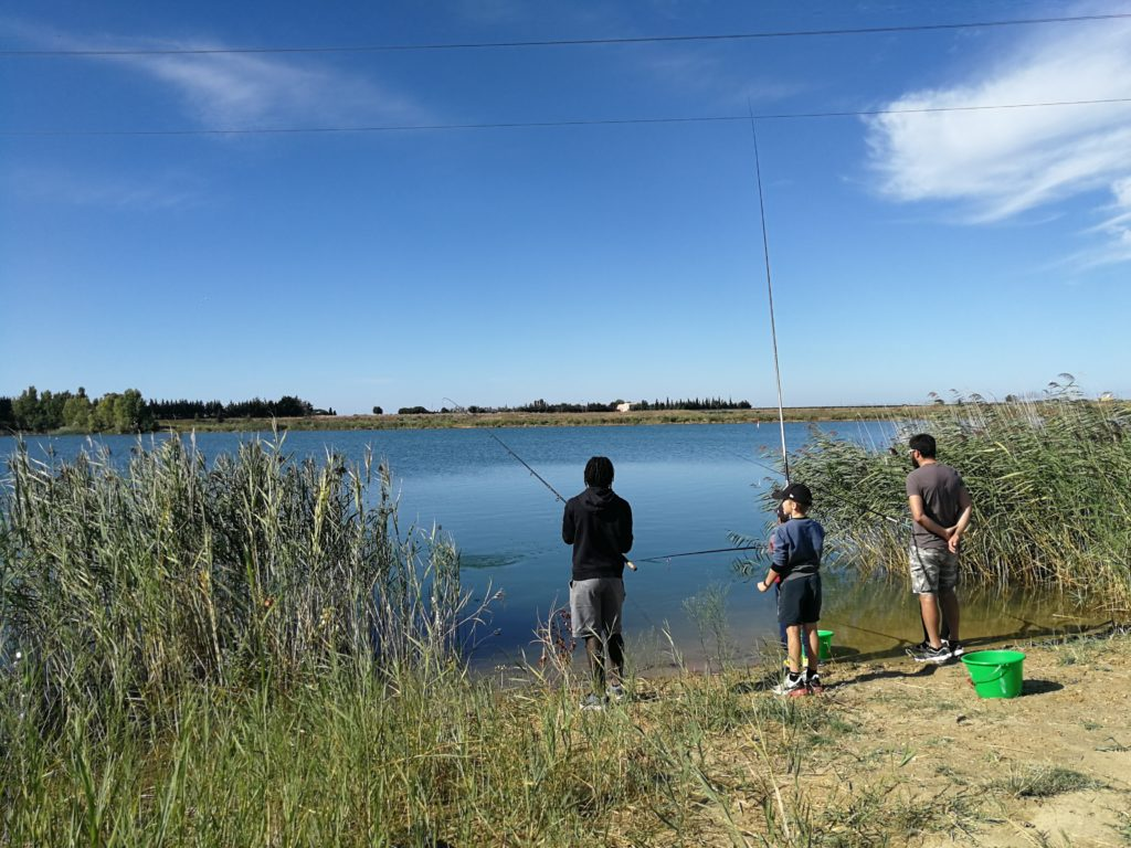 Pêche sur les plans d'eau de Vergèze