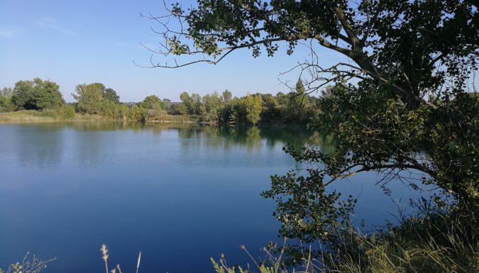 Pêche sur les étangs de Vergèze