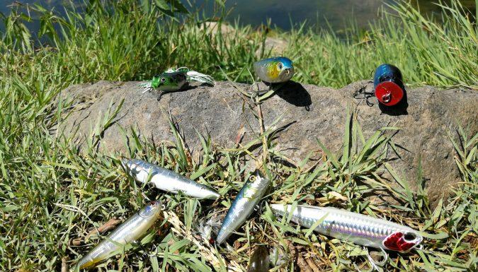 leurres de surface pour pêche estivale