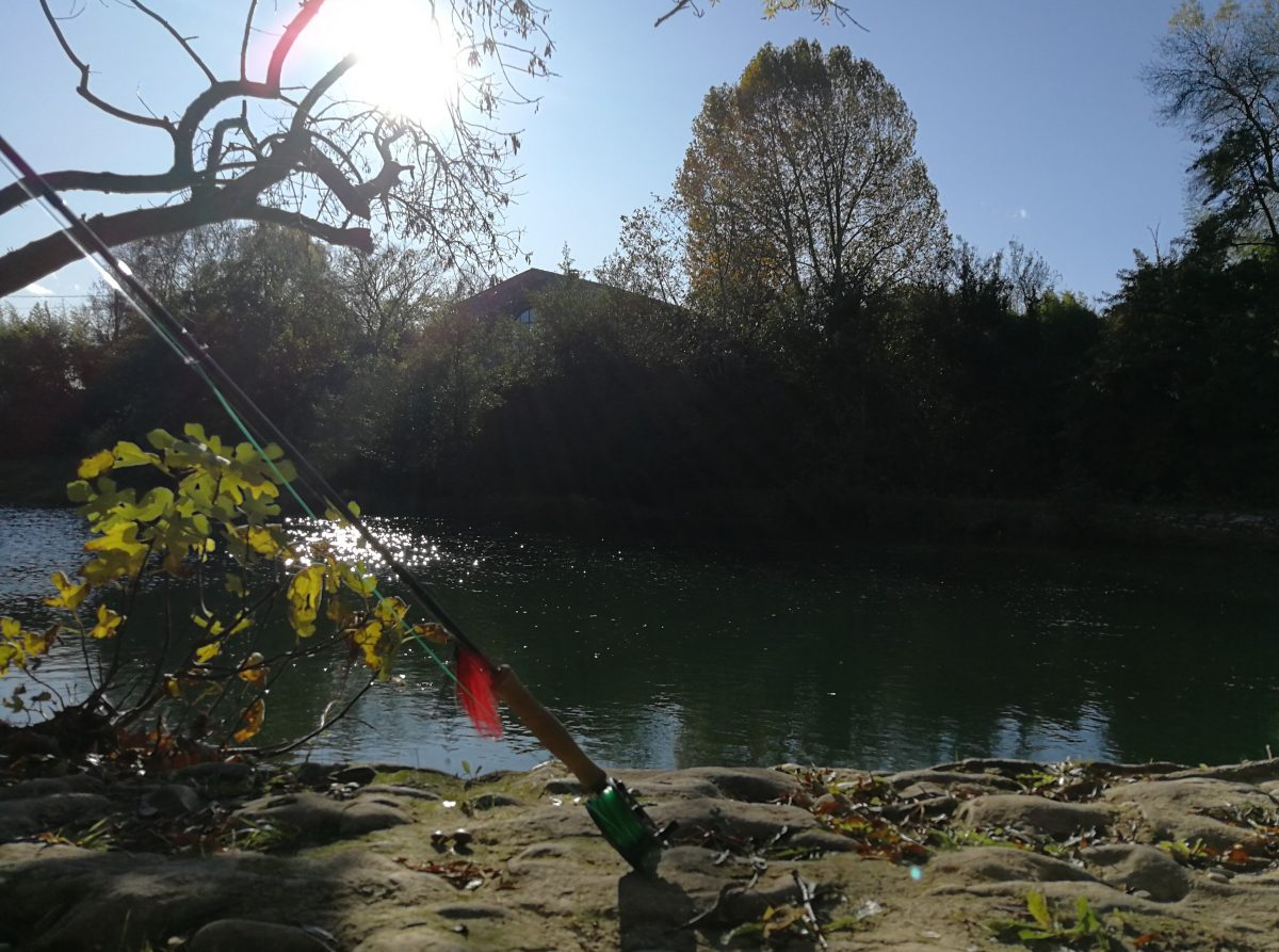 Pêcher le carnassier avec des streamers dans le Gard